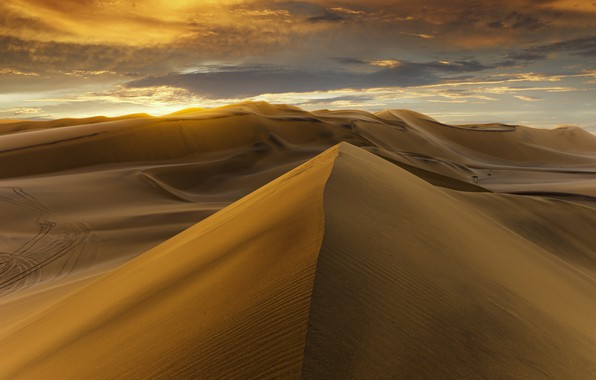 Фото обои desert, sunset, sand