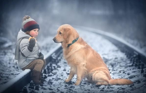 Картинка зима, снег, животное, рельсы, собака, ребёнок, пёс, бублик, Марианна Смолина
