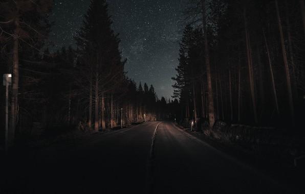 Картинка дорога, лес, небо, свет, деревья, ночь, звёзды, сосны, свет фар