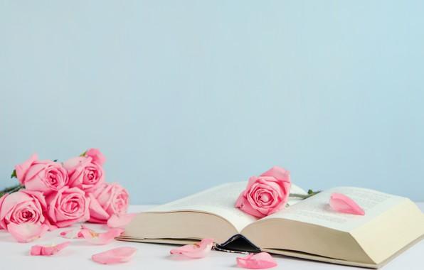 Картинка цветы, розы, лепестки, книга, розовые, бутоны, pink, flowers, romantic, petals, roses, cute