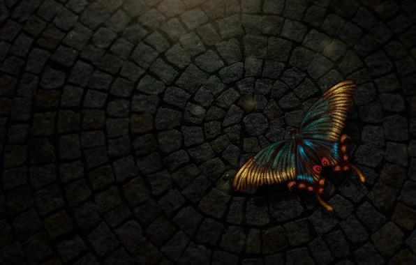 Картинка бабочка, light, digital, texture, art, butterfly
