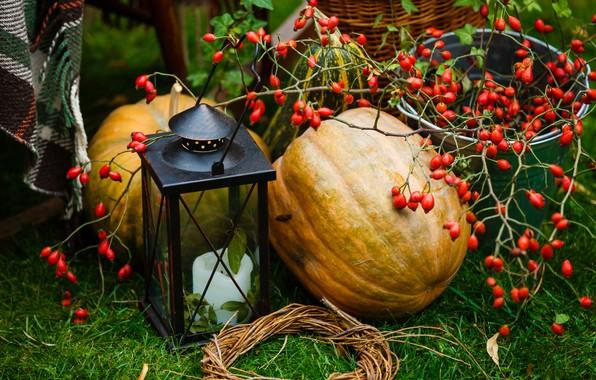 Картинка осень, листья, ягоды, урожай, тыква, autumn, leaves, pumpkin, harvest
