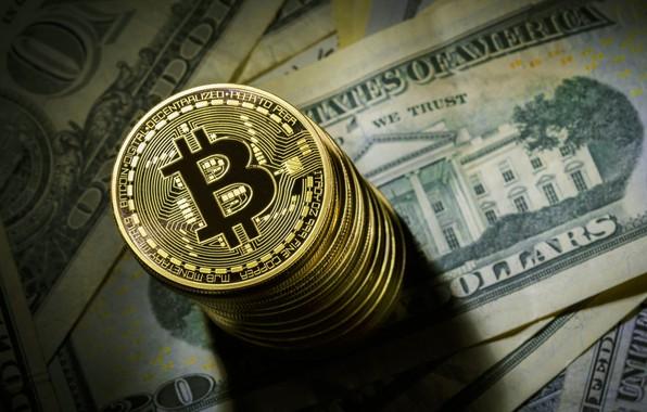 Картинка размытие, доллар, монета, dollar, coin, bitcoin, биткоин