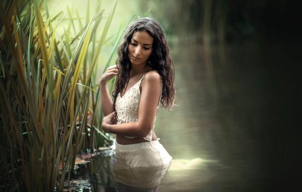 Картинка вода, девушка, поза, настроение, ситуация, руки, камыш