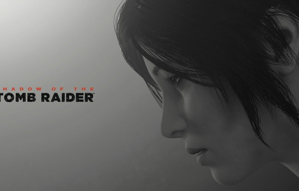 Картинка lara croft, long hair, grey background, shadow of the tomb raider