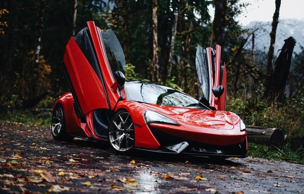 Картинка McLaren, 570S, McLaren 570S