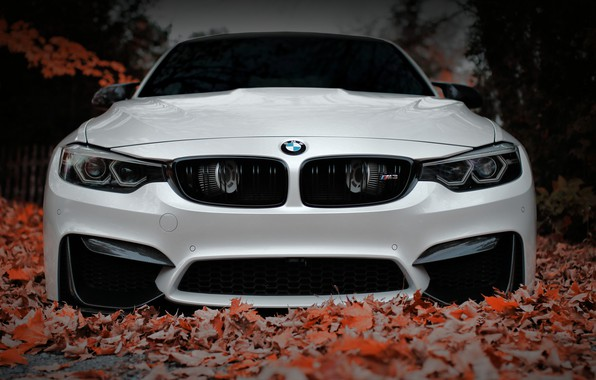 Картинка BMW, Front, White, Autumn, Face, F80, Sight, Aggressive