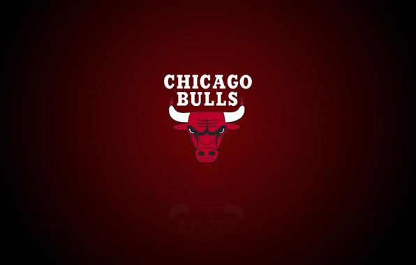 Картинка Chicago, Logo, NBA, Chicago Bulls, Basketball, Sport, Emblem