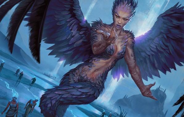 Картинка крылья, перья, сирена, Magic: The Gathering, Hugh Pindur
