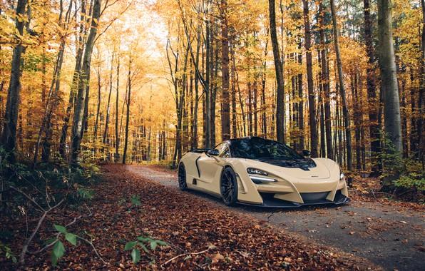 Картинка осень, лес, McLaren, суперкар, 2018, Novitec, N-Largo, 720S