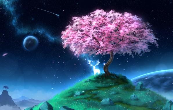 Картинка дух, олень, сакура, холм