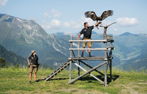 Картинка woman, beautiful, man, eagle, Falconry
