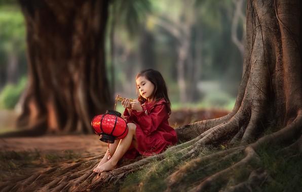 Картинка деревья, природа, босиком, фонарик, девочка, ребёнок, босая, Анастасия Бармина