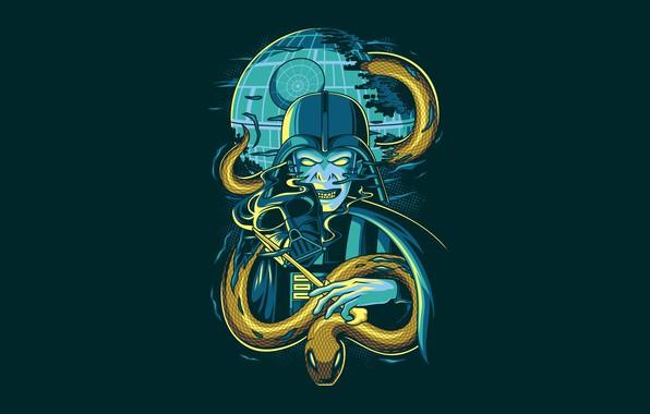 Картинка Star Wars, Fantasy, Art, Darkness, Snake, Vector, Harry Potter, Background, Illustration, Minimalism, Animal, Voldemort, Angga ...