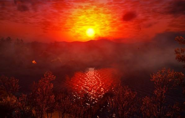 Картинка Закат, Вода, Красный, Цвет, Дерево, Трава, Озеро, Деревья, Ведьмак, The Witcher, The Witcher 3 Wild …