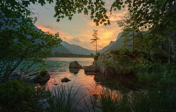 Картинка трава, деревья, пейзаж, закат, горы, ветки, природа, озеро, камни