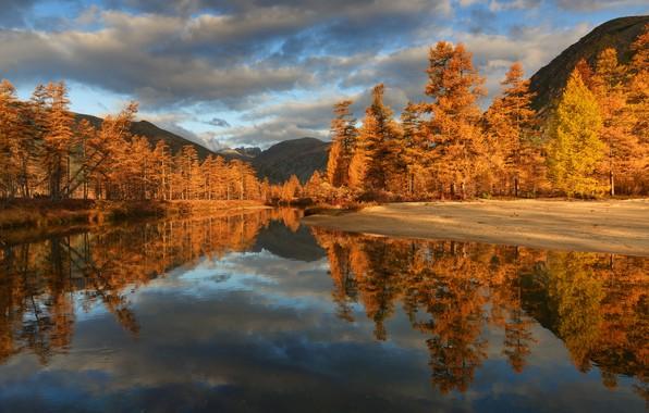 Картинка осень, облака, деревья, горы, отражение, река, берега, Пурга, Колыма, Максим Евдокимов
