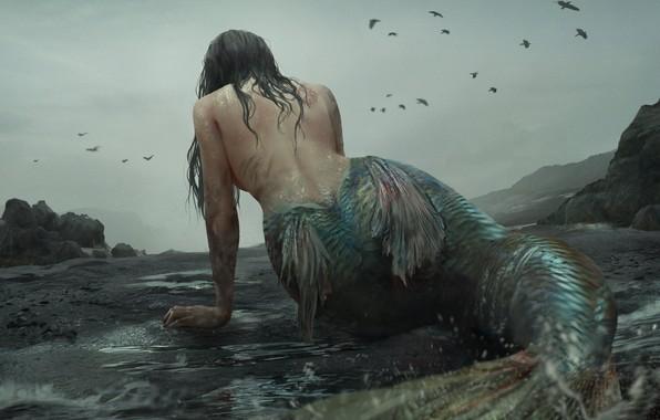 Картинка русалка, монстр, чешуя, плавники, mermaid, скалистое побережье, пасмурное небо, мрачное место, черные вороны, by Akiya