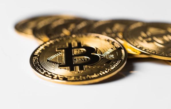Картинка монеты, золотой, биткоин