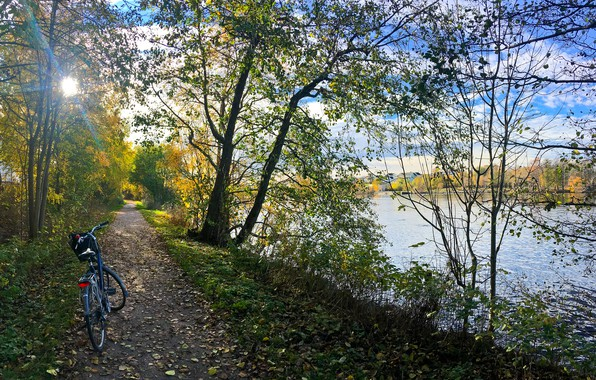 Картинка осень, лес, трава, листья, солнце, деревья, велосипед, парк, река, берег, тропинка