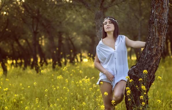 Картинка лето, девушка, Mioara Pacila