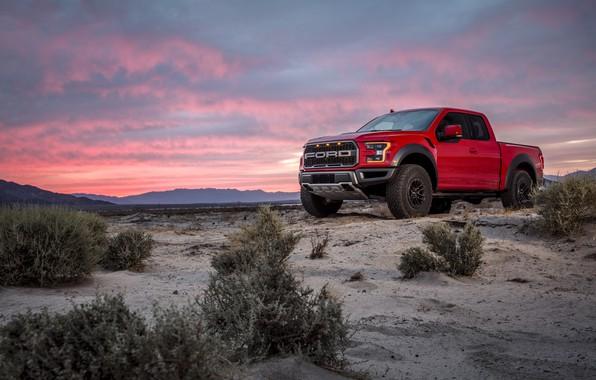 Картинка Ford, Песок, Куст, Пустыня, Raptor, F-150, Дюна, 2019, Ford F-150 Raptor