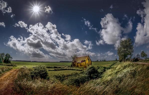 Картинка поле, лето, небо, дом