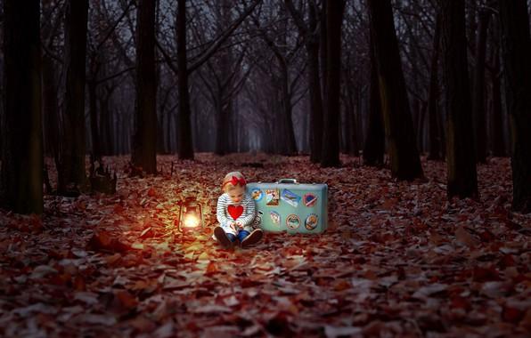 Картинка осень, лес, девочка, чемодан