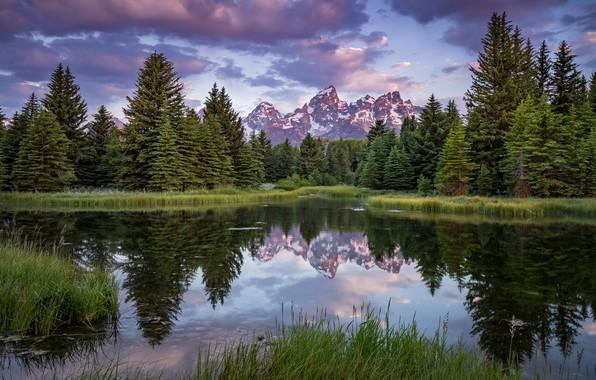 Картинка лес, лето, небо, облака, пейзаж, горы, природа, озеро, отражение, берег, вершины, ели, США, водоем, водная …