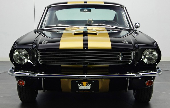Картинка Ford Mustang, Muscle car, Vehicle, Shelby GT 350 H