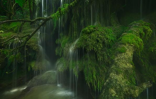 Картинка Франция, водопад, мох