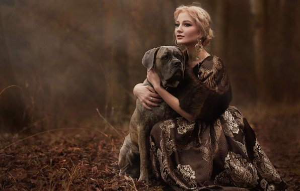 Картинка осень, взгляд, девушка, украшения, природа, собака, серьги, платье, блондинка, пёс, Сироштан Оксана