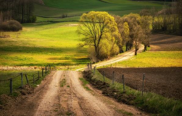 Картинка дорога, природа, пашня