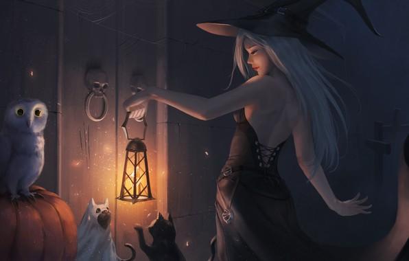 Картинка девушка, кошки, сова, шляпа, платье, дверь, арт, фонарь, Halloween, черепа, ведьма
