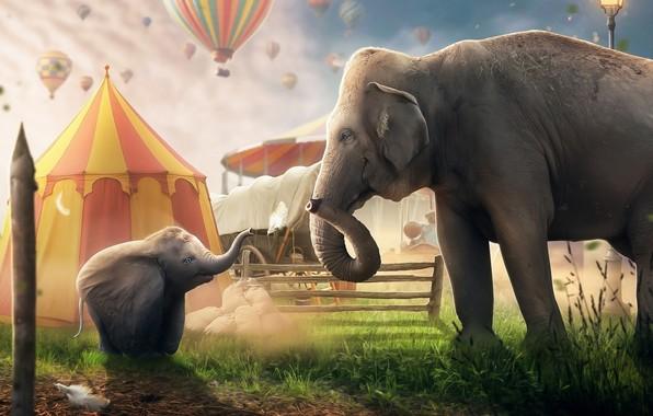 Картинка Слон, Disney, Fantasy, Фильм, Дисней, Цирк, Movie, Elephant, Dumbo, Circus, Дамбо, Tent, Воздушный Шар, Hosne …