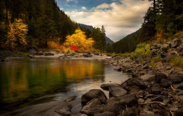 Картинка осень, лес, река, камни, холмы, Doug Shearer