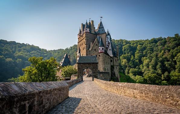 Картинка лес, мост, замок, Германия, Germany, Eltz Castle, Замок Эльц