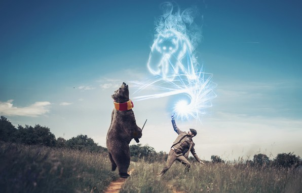 Картинка магия, человек, медведи