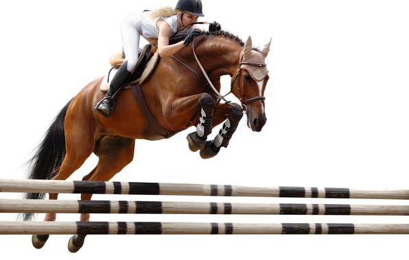 Картинка прыжок, лошадь, наездница, препятствие, конный спорт