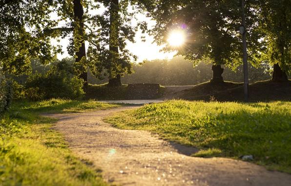 Картинка природа, Парк, Сказочный мир, Петергоф, Александрия, красивый парк, Сказочный парк, Сказочно
