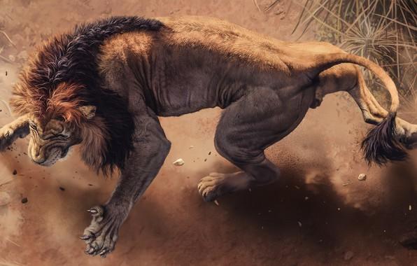 Картинка Лев, Грива, Когти, Lion, Africa s deadliest, Хищники Африки