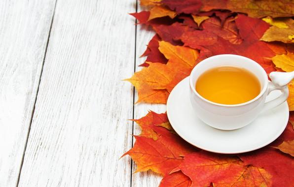 Картинка осень, листья, фон, доски, colorful, клен, wood, autumn, leaves, cup, tea, maple, чашка чая