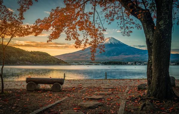 Картинка осень, листья, деревья, парк, colorful, Япония, Japan, гора Фуджи, landscape, nature, park, autumn, leaves, tree, …