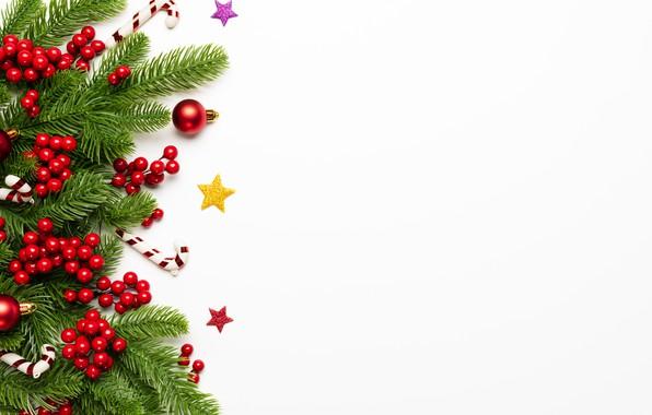 Картинка украшения, ягоды, Новый Год, Рождество, Christmas, New Year, decoration, xmas, Merry, fir tree, ветки ели