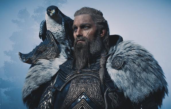 Картинка сокол, викинг, Assassin's Creed Valhalla, Eivor Varinsdottir
