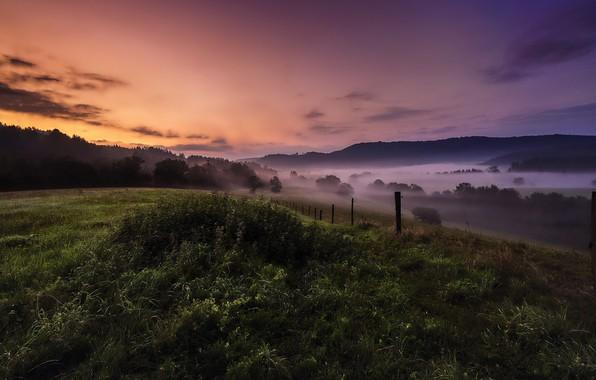 Картинка поле, лето, закат, ночь, туман