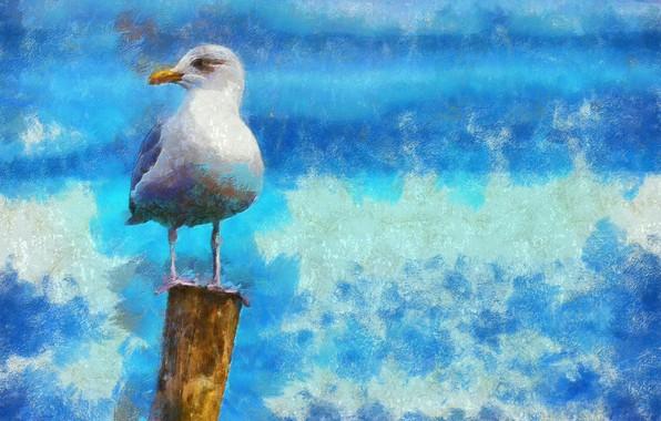Картинка краска, фотошоп, живопись, мазки, фактура