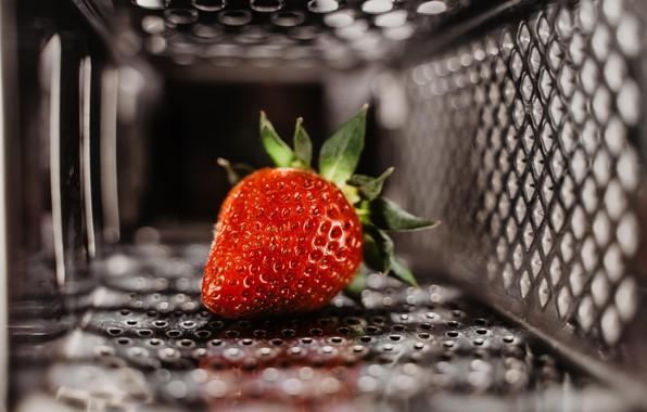Картинка berry, metal, red, close-up, food, macro, fruit, blur, bokeh, strawberry, mesh, 5k hd background