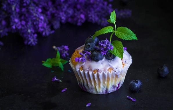 Картинка цветы, ягоды, черника, мята, кекс, кексик