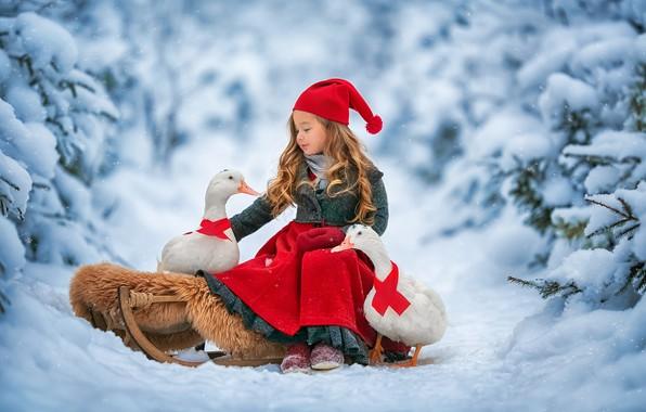 Картинка зима, лес, снег, птицы, утки, девочка, сани, Анастасия Бармина